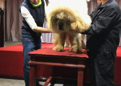 2017 Trip China 23