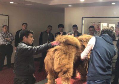 2017 Trip China 24