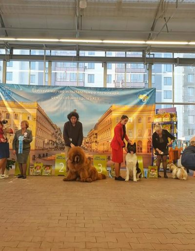 INTERNATIONAL DOG SHOW FCI-CACIB