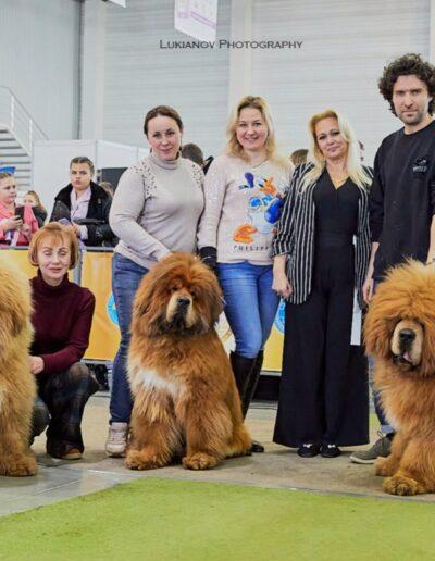 INTERNACIONAL DOG SHOW 2020